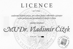 Licence - interna